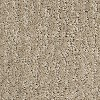 Raw Taupe image